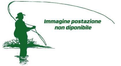 16 - Bosco Rogeno 2